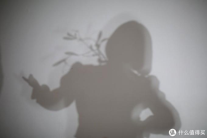 【影棚体验】从自然光到摄影灯的布光练习