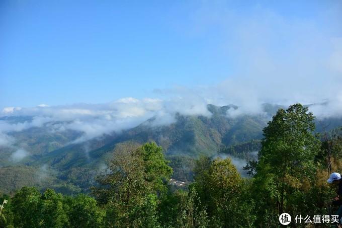 云南古六大茶山地区,几乎每个山头和村寨茶园都带有自己独特的风味和香气