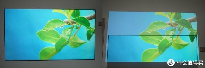 白天也能放投影?菲斯特S1画卷光学屏体验(附白墙投射对比)