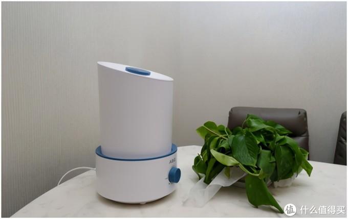 提升室内环境适宜度的贴心助手,ABG加湿器测评