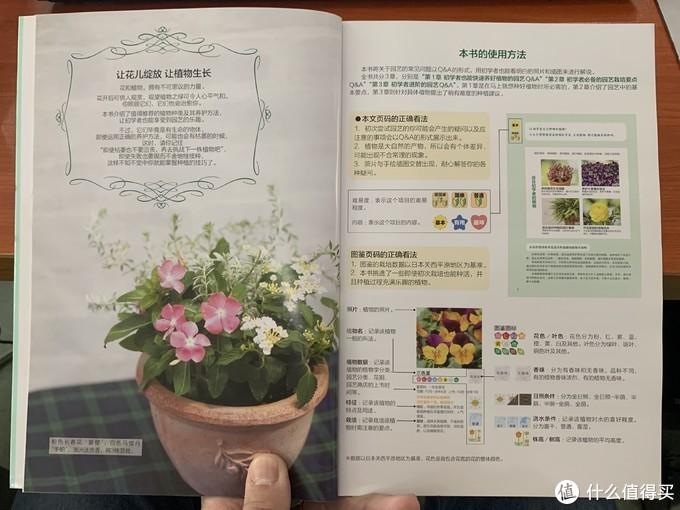 图书馆猿の2021读书计划10:《极简园艺入门》