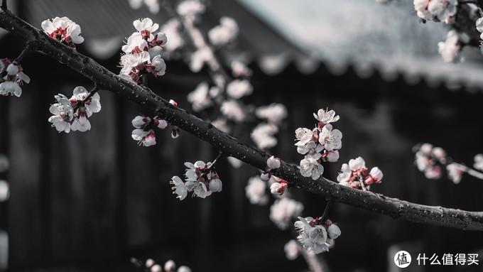 离愁渐远渐久渐无穷 迢迢不断不绝如春水——兼读欧阳修《踏莎行》