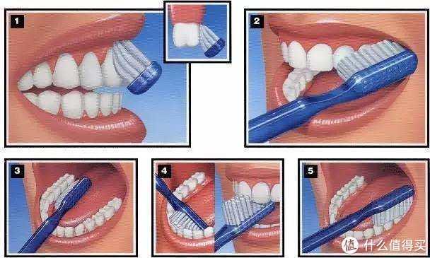 售价100多的声波电动牙刷如何做到旗舰款品质?博皓T31使用详评