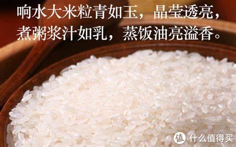 好米一定好吃么?煮饭是一门玄学!