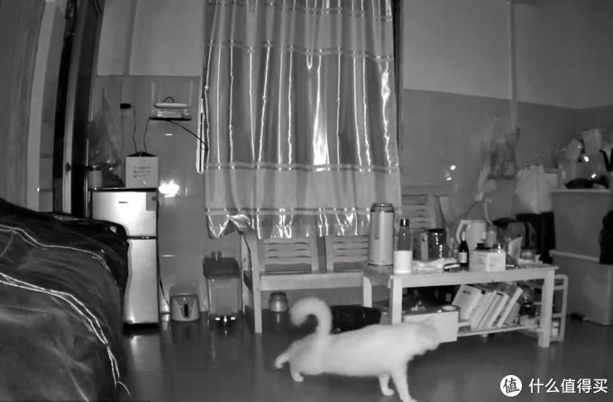 既能看家,又能逗猫,华为智选小豚当家AI全彩摄像头2K版开箱