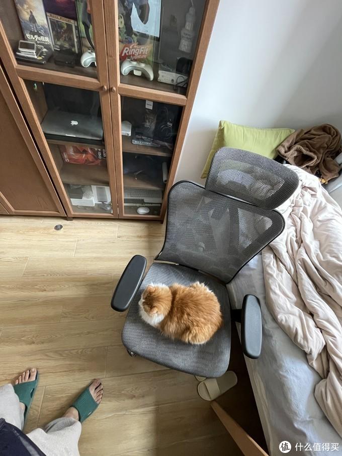 工学椅西昊M57