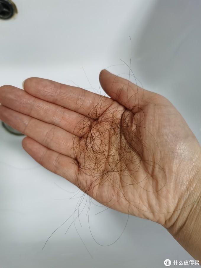 洗头掉的头发