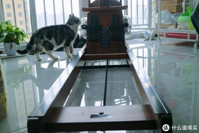 Come on!跟我运动嗨一嗨,野小兽R30划船机的初体验