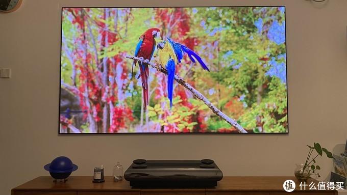 电视太俗,有钱人的客厅都用它来镇场子了