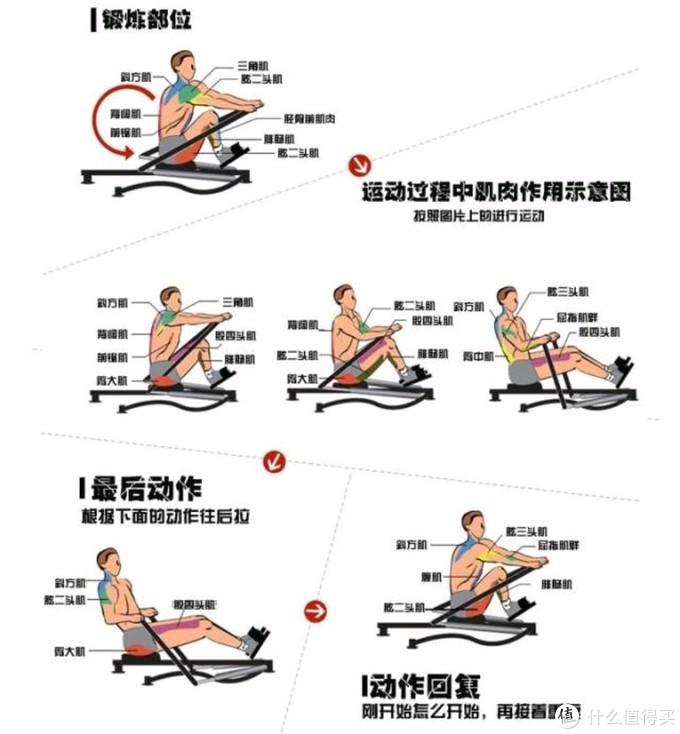 打工人的健身神器--野小兽划船机初体验(附:划船机运动要领、玩法)