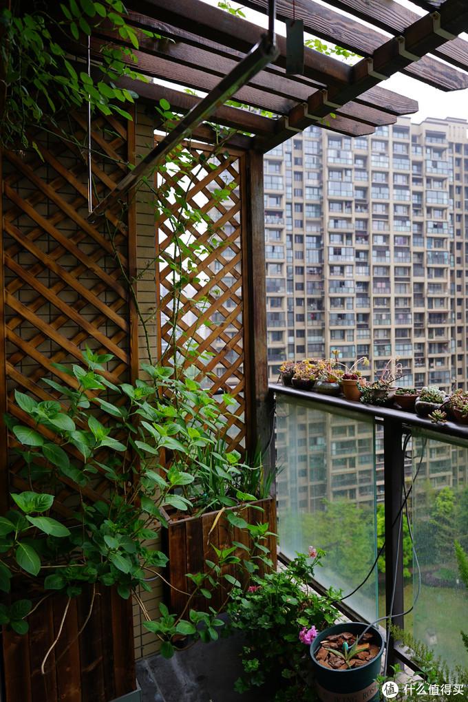 高层住宅如何打造秘密花园 阳台篇