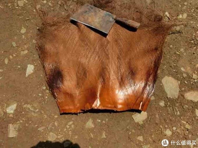 """干过撒哈拉的干货  以后选床垫再也不会提""""棕""""色变"""