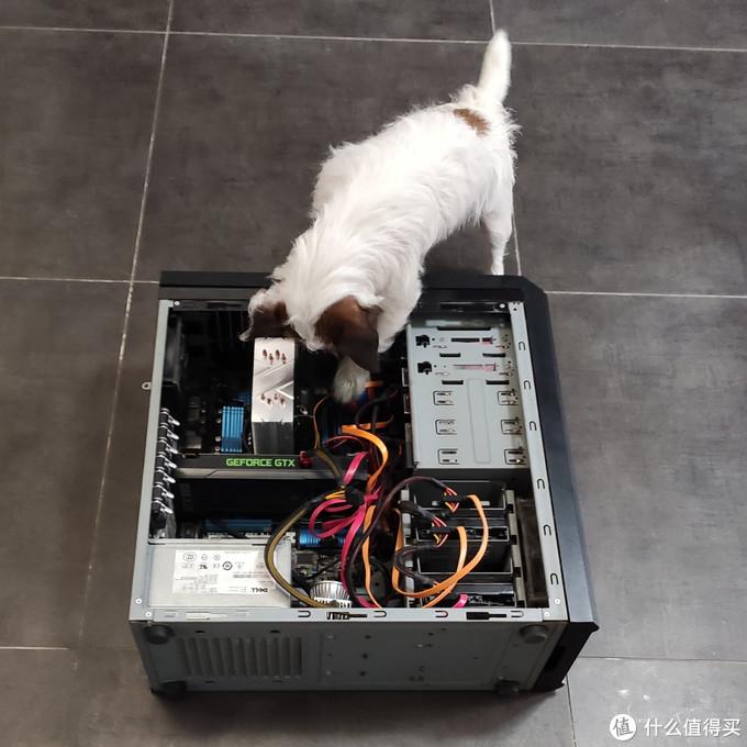 乔大爷修电脑
