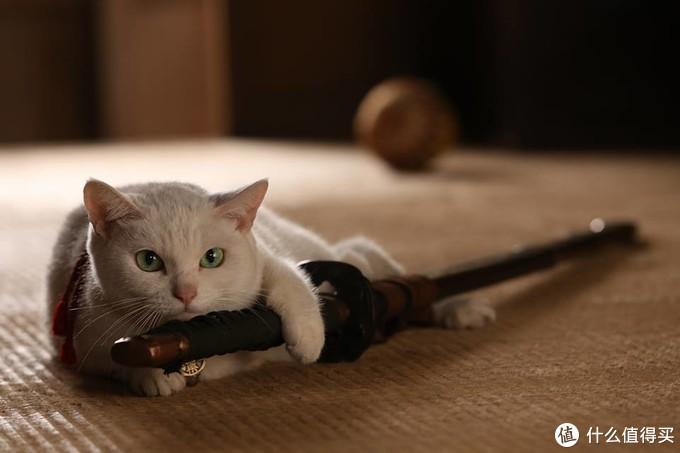 小心,我出剑是很快的哟