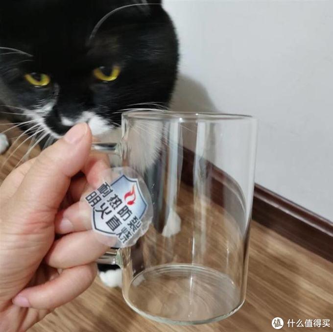 喝水也能喝出幸福感,唯铭诺雅趣杯测评