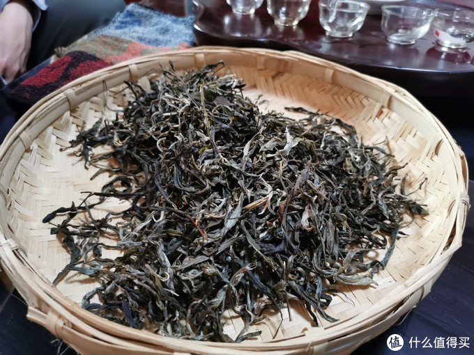 前一日刚做好的干毛茶(核心区古树尚未大量采摘,此为核心区周边老树)