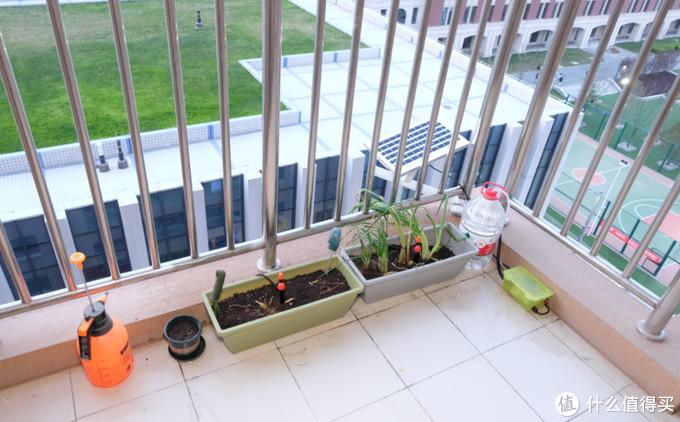 雷士太阳能庭院灯拆解&DIY阳台自动浇水装置