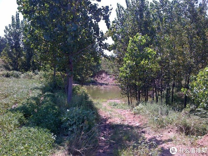 一个小水库就控干了山谷里好多的水。