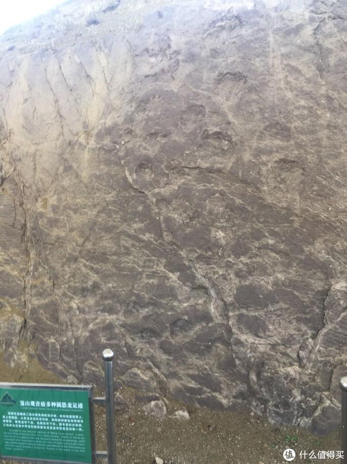 石头的那种坑洼可能就是宣传的遗迹化石。远不如我当年发现的那种有意思。不过之前发现的那处应该已经被挖水库破坏了。即使不破坏也早已经风化掉了。八年前来找就没找到。