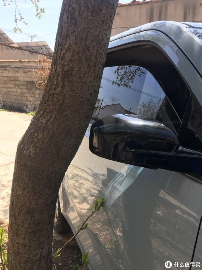 回来后把车停在门口的树边,后视镜距离树干很近,一根从根部发起的小树枝摸着我的小车车门。
