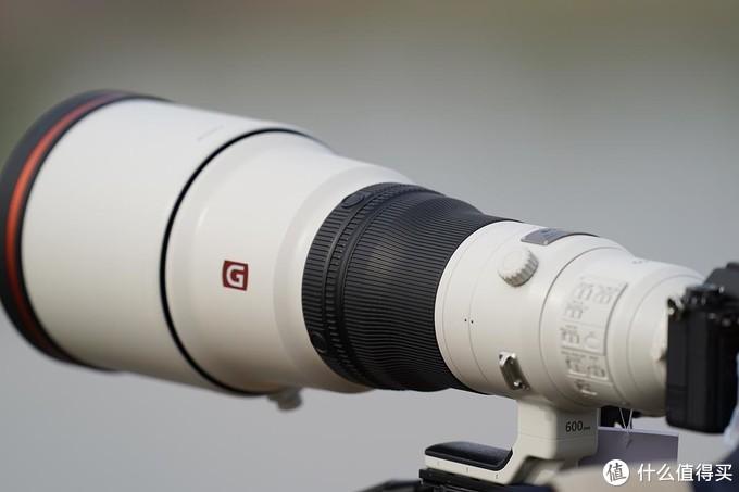 摄影器材选择400定焦还是选择600定焦?