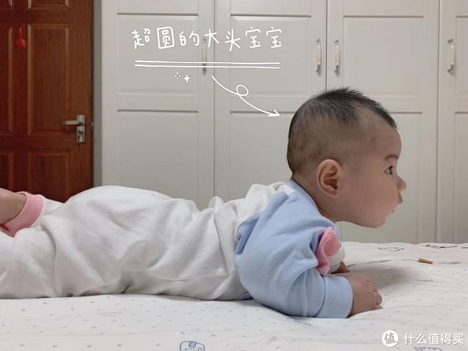 圆头养成计划:快来一起轻松get!!!
