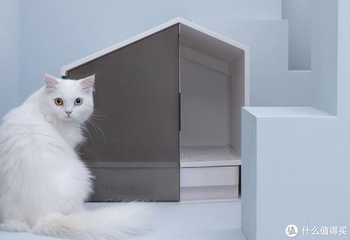 实用不贵满足猫咪吃喝拉撒的全方位需求