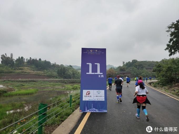 2021自贡恐龙半程马拉松可能是弯道最多的赛道