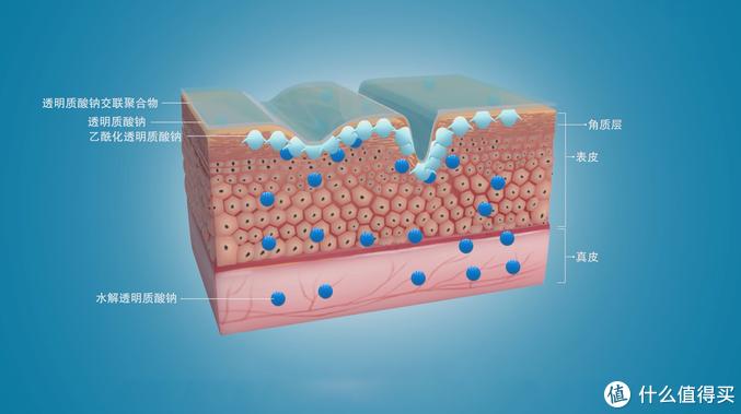 值男看过来,硬核科普玻尿酸——洗脸&精华可能是最适合懒懒的男同胞们的皮肤保养方式