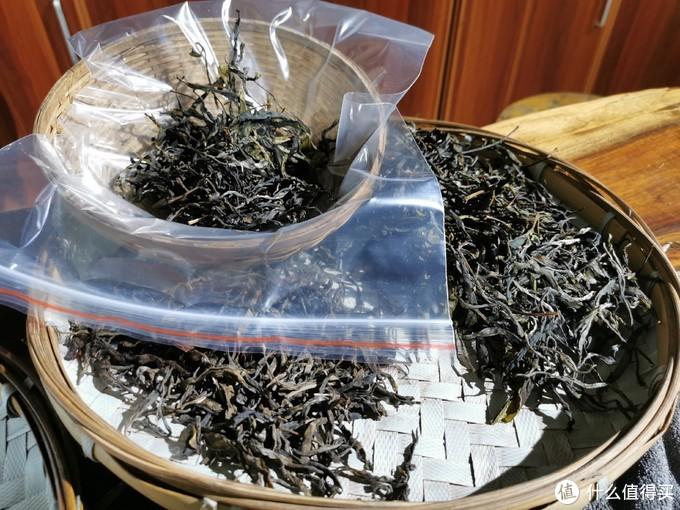 不同树龄、不同年份的茶品对比品饮
