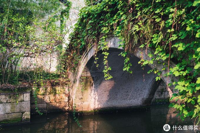 绿植覆盖的石桥