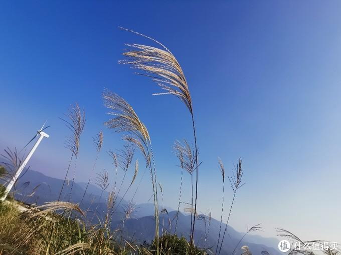 风景秀丽的风车山