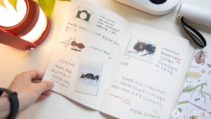 开箱测评当当狸智能显微镜,显微镜下的微观世界真神奇