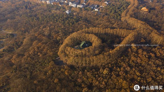 【美龄宫】美龄宫的外围种着梧桐树,从空中看,像是一颗吊坠。