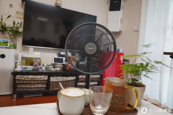 魔都入夏,又到了该入手电风扇的时候,智米直流变频落地扇3体验