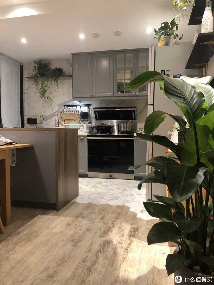 68㎡两室|连厨房都塞满绿植,老公洗碗的快乐度会不会多一点