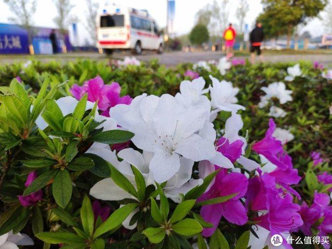 每一次半马都有不一样的回忆 重庆大足龙水湖跑了半马泡温泉