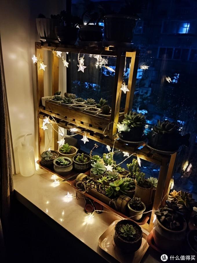 超低成本DIY:星星灯+太阳能灯=每晚自动亮起的多肉景观灯