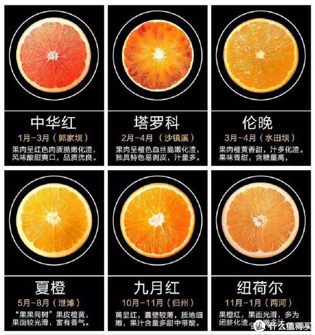 爱吃橙子的值友,可以保存一下这张图,一年都可以吃到新鲜的橙子
