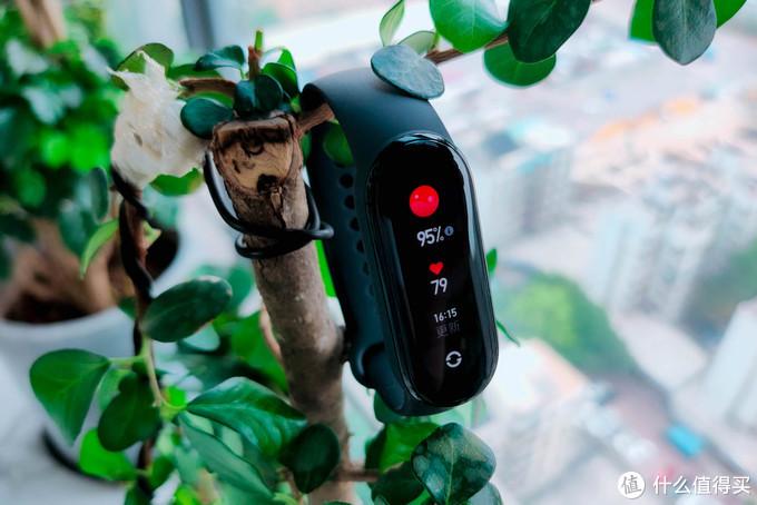 傻傻分不清,小米手环6评测:干掉按键+血氧检测+心率监测