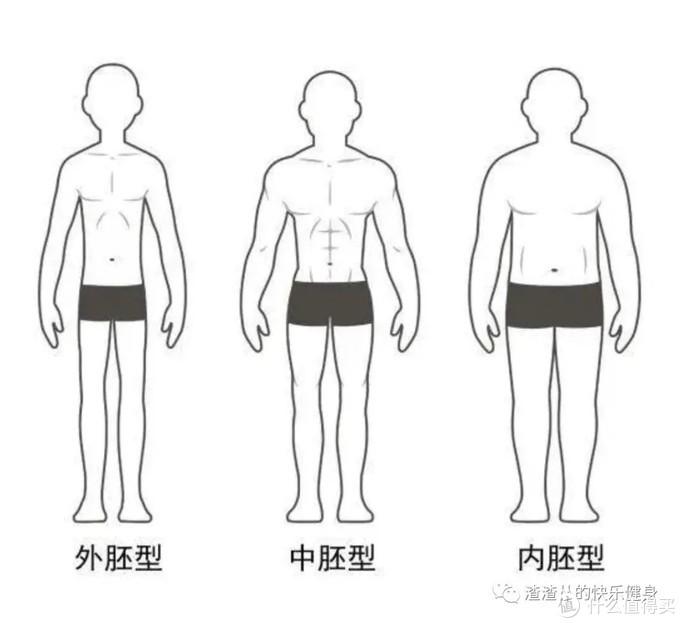 3种体型对号入座,看看你有没有肥胖基因?(内含简单实用减脂攻略)
