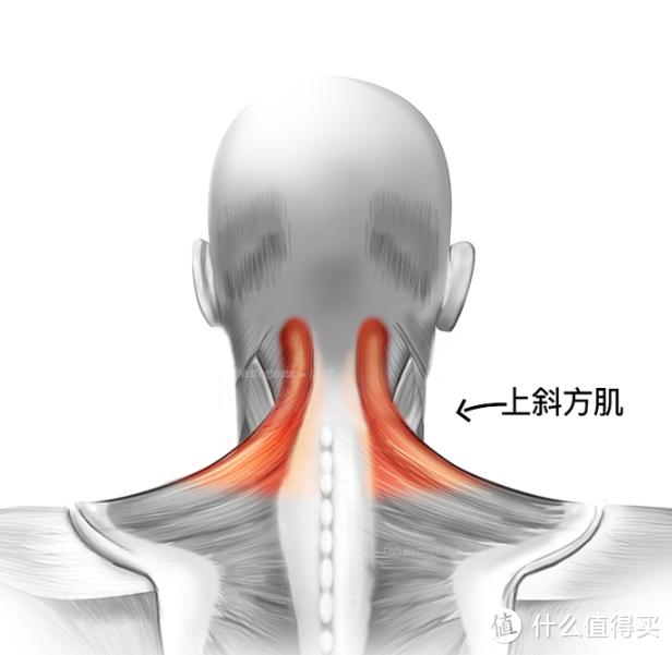 既时尚又实用,随时随地来一次颈部按摩--西屋颈椎按摩仪使用测评
