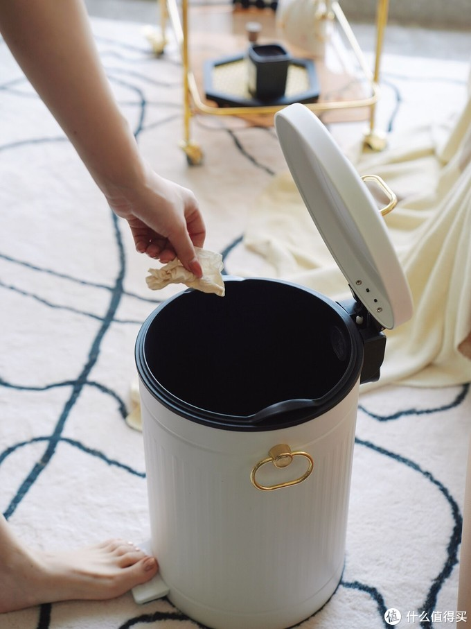 整个家是轻奢风格的装修 麦桶桶罗马纹垃圾桶