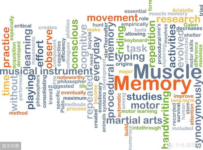 肌肉记忆的科学:为什么你不需要太担心短期的停练?