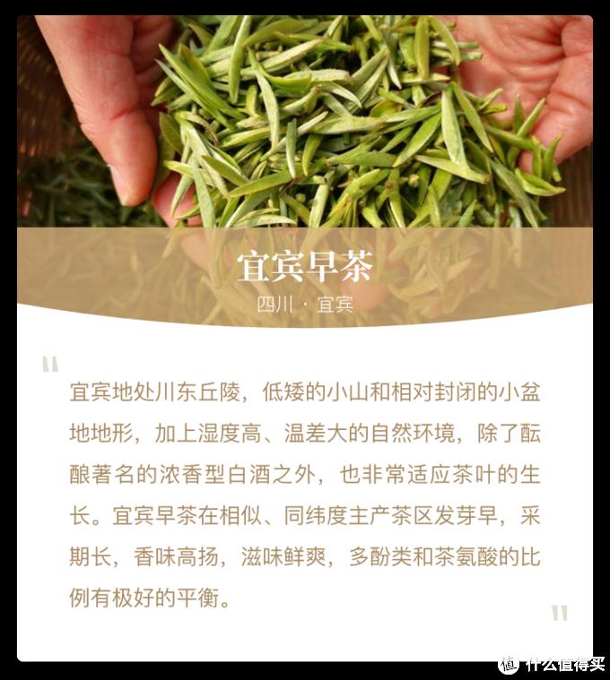 风物地理:中国春日绿茶地理