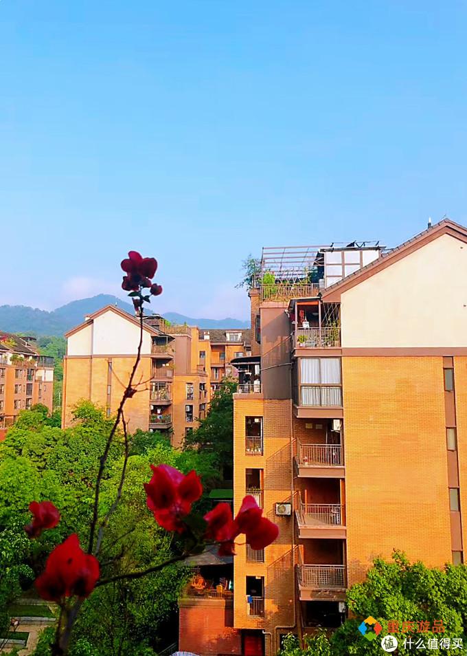 重庆小两口环游中国:不想在大学城当个体户,追求梦想从卖房开始