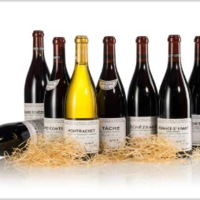 Vine | A Leading Continental Collection | Finest & Rarest Wines