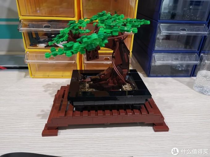 LEGO 花草植物系列 10281 盆景盆栽 评测