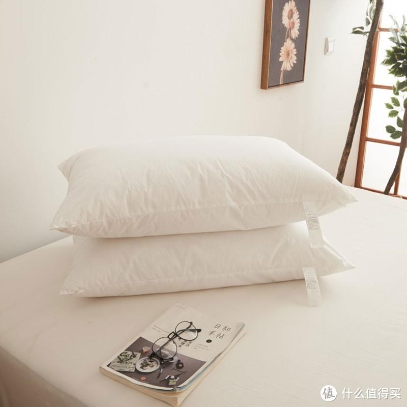 风超大的软管枕,终于被我拉来测评了!