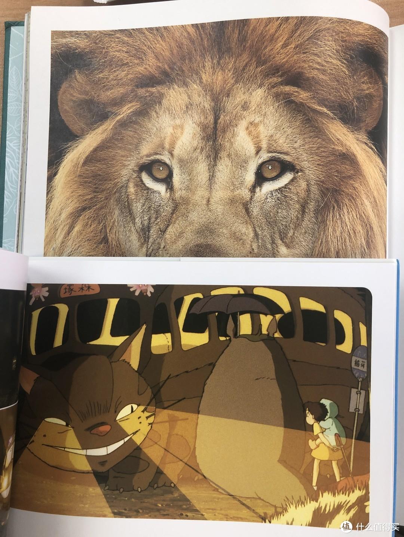 图片方面的对比,个人感觉龙猫的印刷方式能够更好地表现色彩,主管感受更加细腻